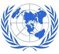 دولي- العدوان على غزة : الأمم المتحدة تتهم كلا الطرفين بارتكاب جرائم حرب في 2014