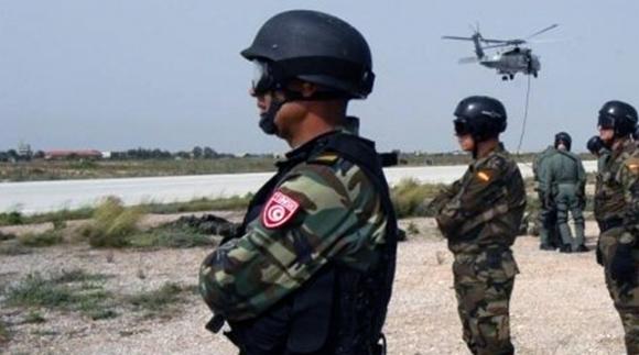 وزارة الدفاع: العثور على حقيقة تعود لاحد ارهابي مطماطة ...