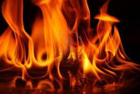قابس: حريق بمدخل المدينة يتلف أجزاء كبيرة من واحة نخيل ...