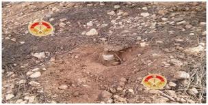 جبل السمامة :الوحدات العسكرية تفجر لغمين وضعتهما مجموعة ...