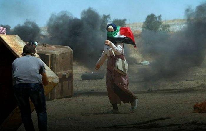 تونس تُدين عمليات القتل الممنهج للفلسطنيين من قبل الاحتلال الاسرائيلي