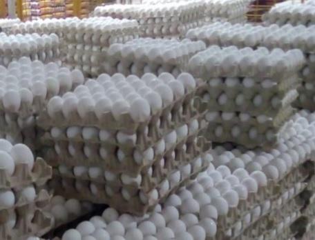 حجز مليون بيضة إثر حملة مراقبة اقتصادية