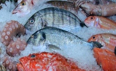 ارتفاع أسعار السمك خلال النصف الاول من ديسمبر 2018