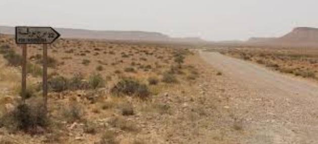 الرابحي يعاين موقع تنفيذ المشروع الفلاحي الأول من نوعه في صحراء تطاوين