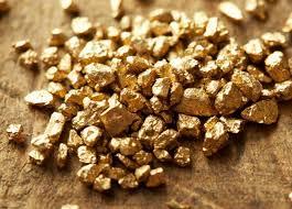 """خبراء :""""لا وجود لمناجم من الذهب بالكاف"""""""