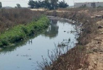 """رئيس بلدية الهوارية: غلق""""وادي القرعة"""" ظرفي"""