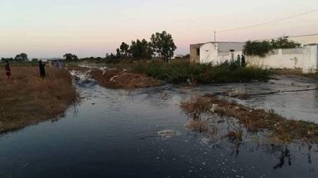 قرارات جديدة لمعالجة الوضع البيئي في وادي القرعة بالهوارية