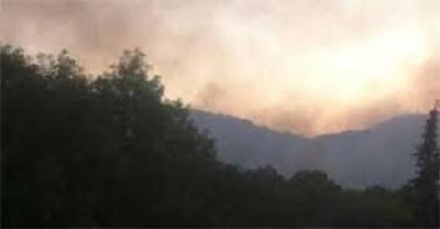 القصرين : حريق بالمنطقة العسكرية المغلقة بجبل بسمامة