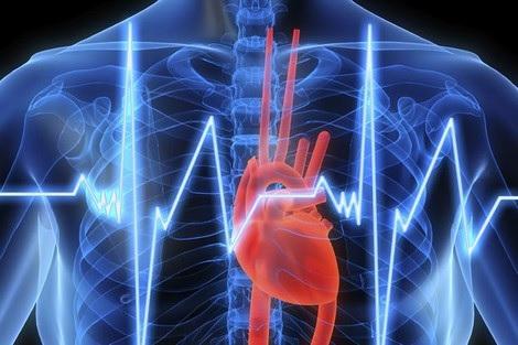 30% من الوفايات في تونس سببها امراض القلب و الشرايين
