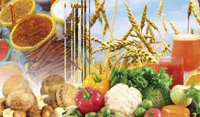 عجز الميزان التجاري الغذائي يرتفع الى 1114 مليون دينار