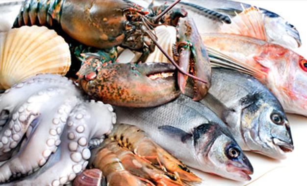 وزارة الفلاحة: تطور صادرات الصيد البحري