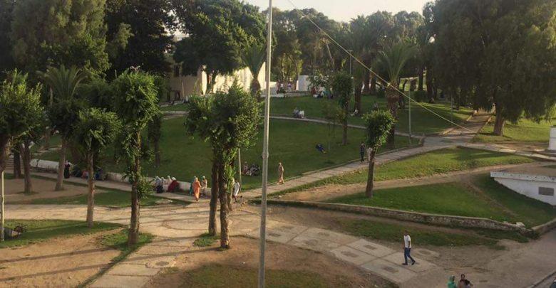 """مخطط أخضر لتحويل بلدية تونس إلى """"مدينة الحدائق"""""""