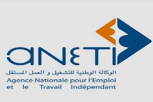 الوكالة الوطنية للتشغيل تضبط برنامج عملها خلال السنوات القادمة