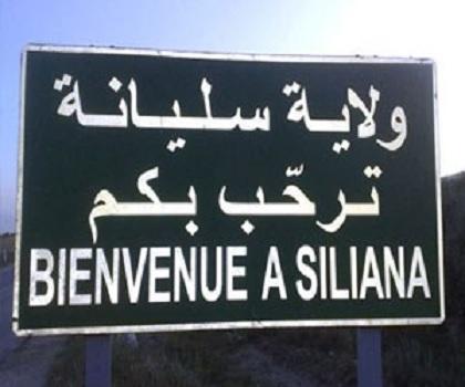 سليانة: جانفي 2020 موعد انطلاق أشغال جسرين بين سيدي بورويس و العروسة