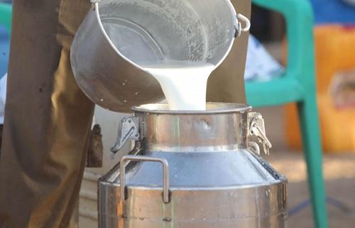 """تطاوين :انطلاقة واعدة لمركز تجميع الحليب في قرية"""" كرشاو"""""""