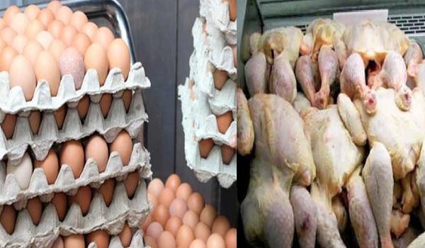 تراجع أسعار البيض ولحم الدجاج عند الإنتاج