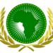 كورونا: تونس تتسلم اليوم مساعدات طبية من الإتحاد الإفريقي