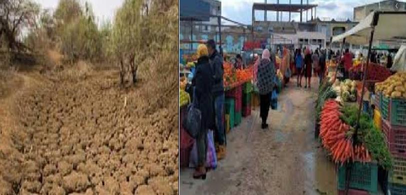 غلاء الاسعار و الجفاف يهدد تونس مع تواصل انحباس الامطار