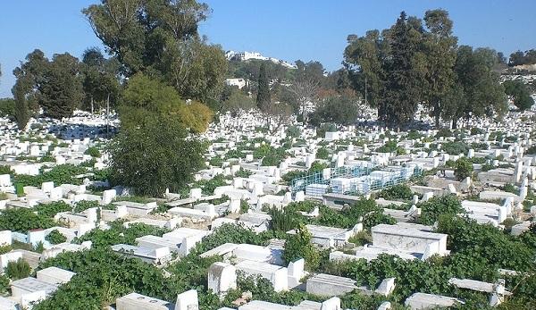 بلدية تونس تعبر عن استعدادها لقبول ضحايا الكورونا بمقبرة الجلاز