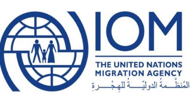 منظمة الهجرة الدولية: 53 % من المهاجرين فقدوا عملهم