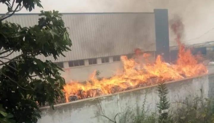 فتح تحقيق في إندلاع حريق بمصنع المناديل الورقية بالنفيضة
