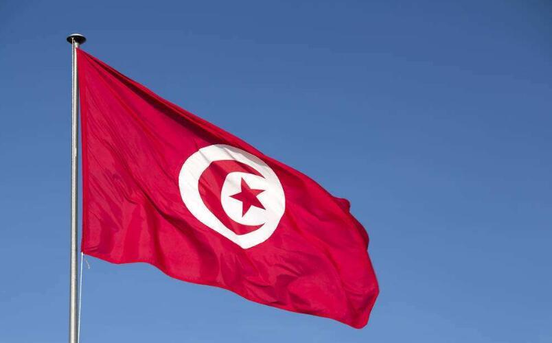 تونس تحيي اليوم العالمي للشغل