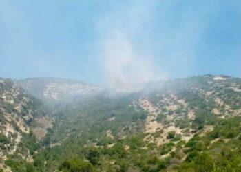 بنزرت: السيطرة على حريق نشب بالمنطقة الغابية العيون في غار الملح