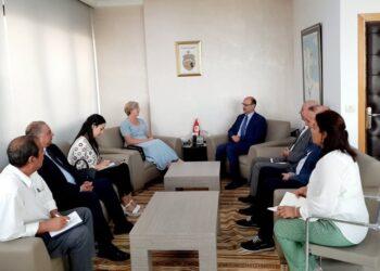 اهتمام بريطاني بمشاريع الطاقة المتجددة في تونس
