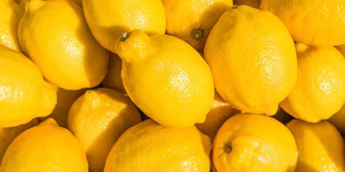 القصرين: حجز 10 أطنان من الليمون المعدّ للتهريب للمرّة الثانية على التوالي