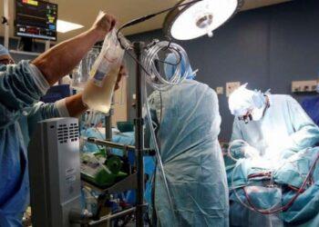 قريبا: استئناف عمليات زرع الأعضاء في تونس