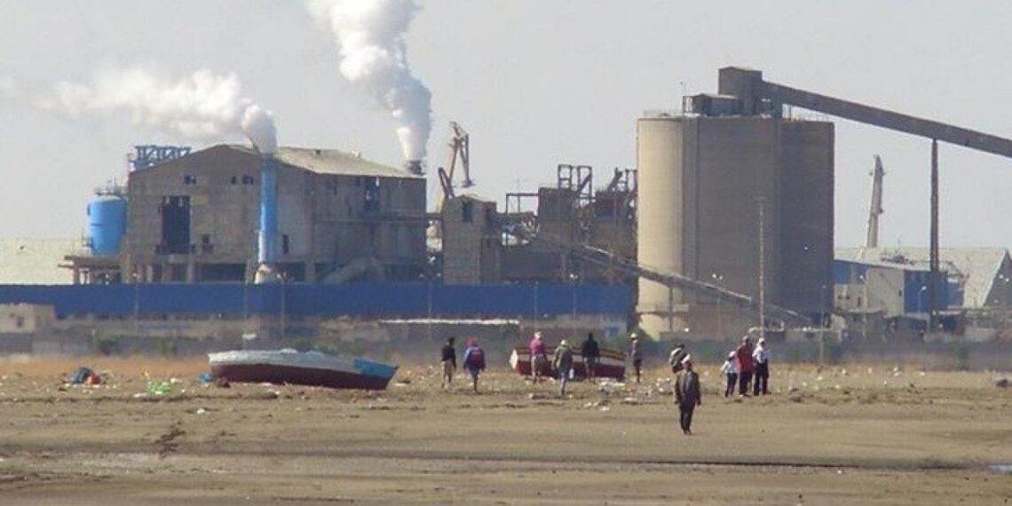 المجمع الكيميائي: نحو توريد الفسفاط من الجزائر
