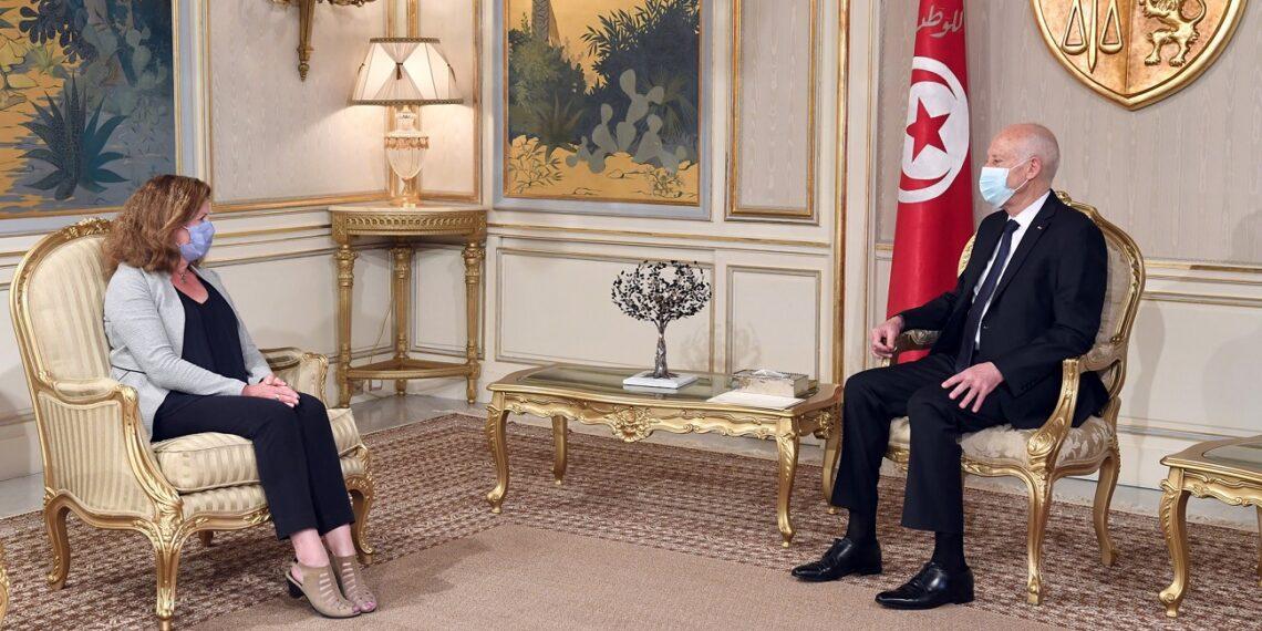 رئيس الجمهورية يلتقي رئيسة بعثة الأمم المتحدة للدعم في ليبيا
