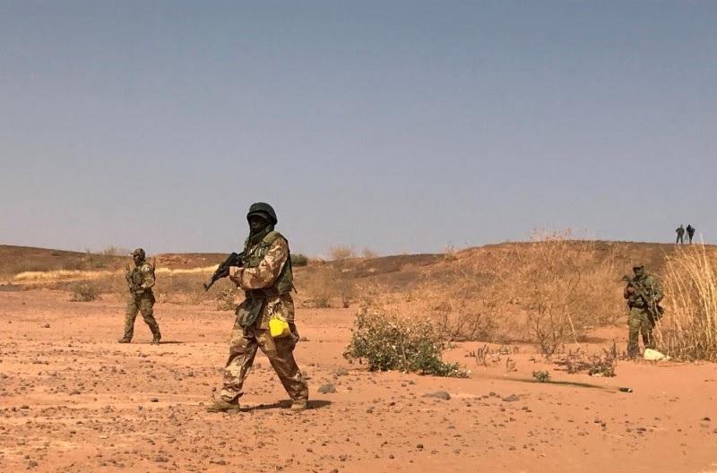 مقتل 100 من عناصر العصابات المسلحة في نيجيريا منذ جويلية