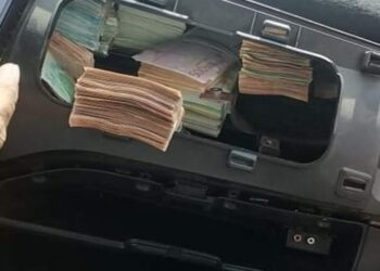 حجز مليون دينار من العملة الأجنبية على الحدود الصحراوية التونسية الليبية