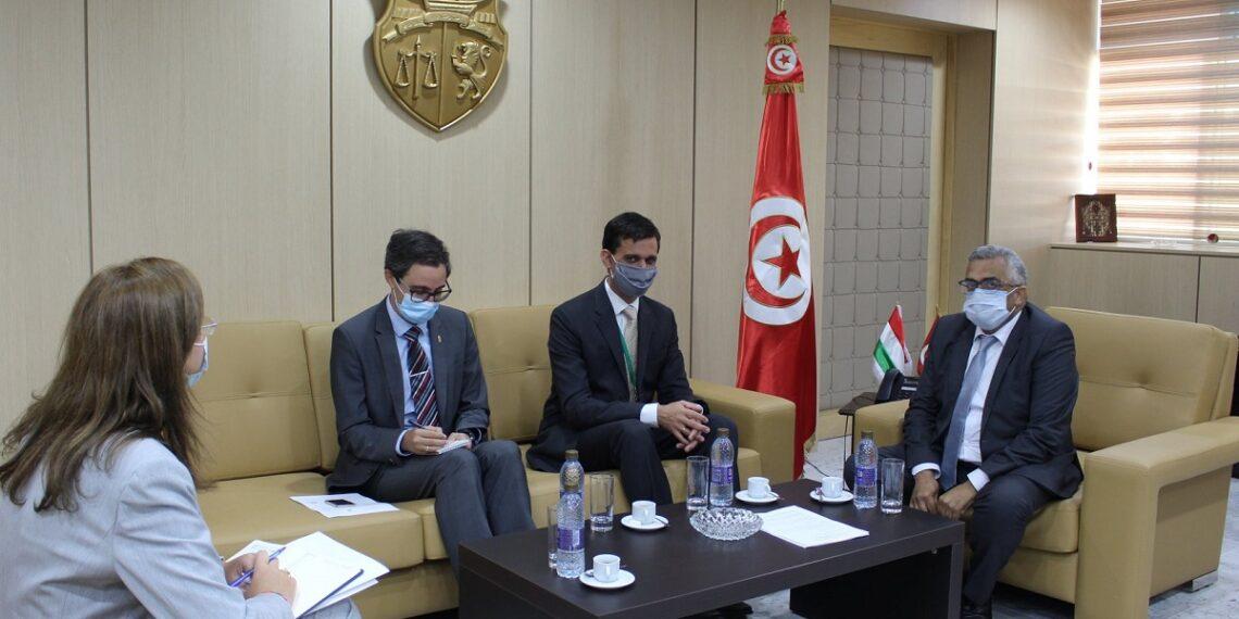 فحوى لقاء وزير العدل بسفير المجر بتونس