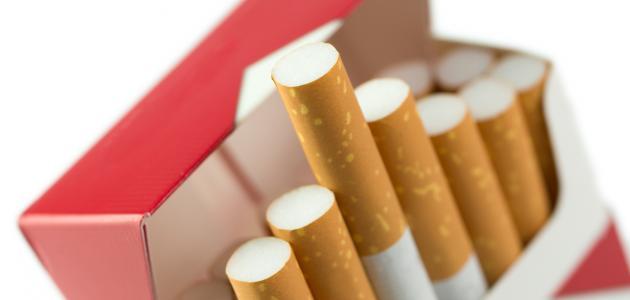إجراءات جديدة للتحكم في جودة السجائر ومتابعة مسالك التوزيع