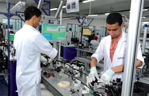 المنستير: 6 آلاف فرصة عمل جديدة في قطاع الكوابل سنة 2021