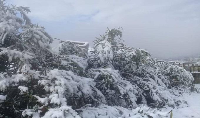 سليانة: تساقط كميات من الثلوج بمرتفعات الجهة