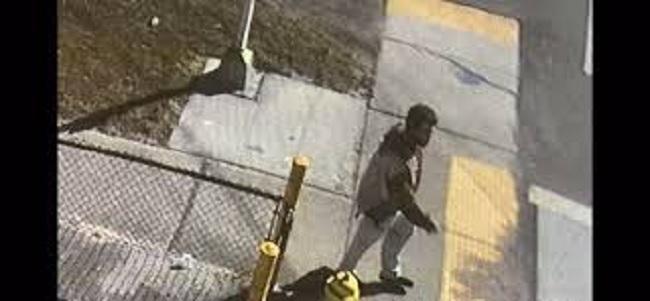 الولايات المتحدة: رجل يسرق سيارة محملة بلقاح كورونا