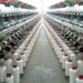 النسيج الصناعي التونسي يسمح بتنفيذ مشاريع ضخمة في مجال الطاقات المتجددة