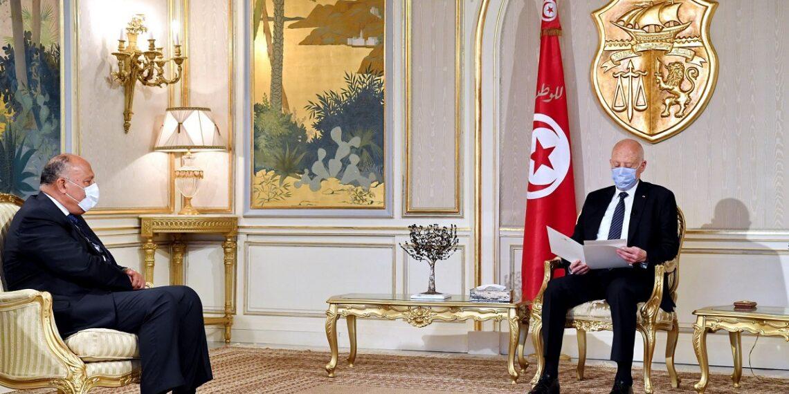 ملف سدّ النهضة: قيس سعيّد يُؤكد دعم تونس لمصر