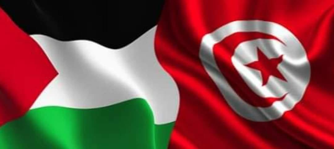 طائرات عسكرية لنقل المساعدات الى فلسطين