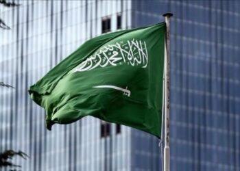 السعودية: نقف مع كل ما يدعم أمن تونس واستقرارها