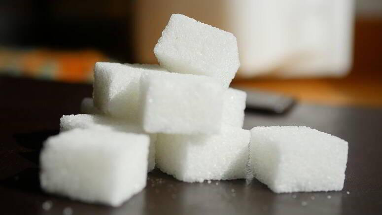 جندوبة: انتاج أكثر من 7000 طن من السكر و15 ألف طن من العلف الحيواني