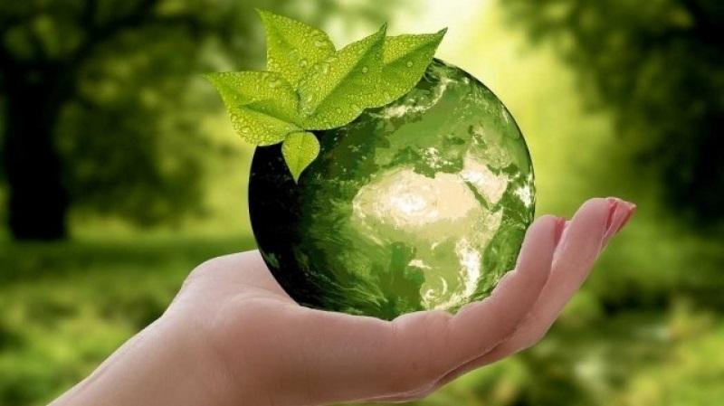 تونس تحتضن المؤتمر العالمي للفلاحة البيولوجية