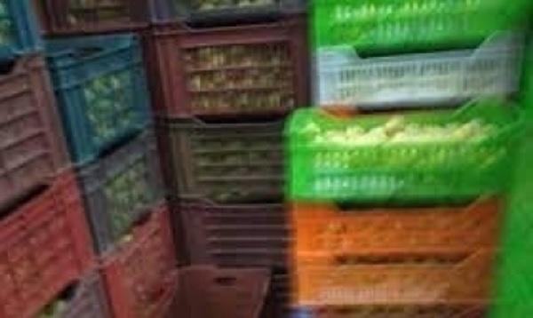أريانة: حجز 33 طنا من الغلال بمخزن تبريد عشوائي