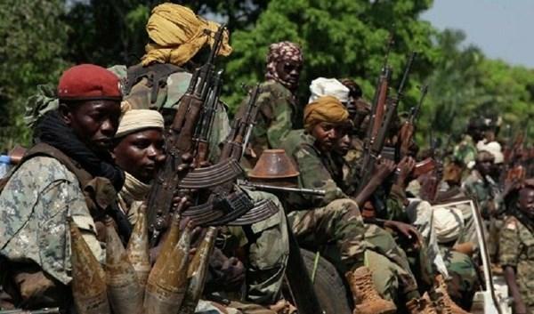 مقتل وإصابة 40 شخصا في أفريقيا الوسطى إثر هجوم لمسلحين